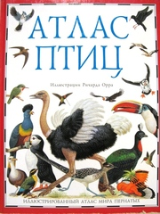 Атлас птиц. Иллюстрированный атлас мира пернатых.