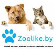 http://zoolike.by/ Интернет магазин товаров для собак,  лучшие цены